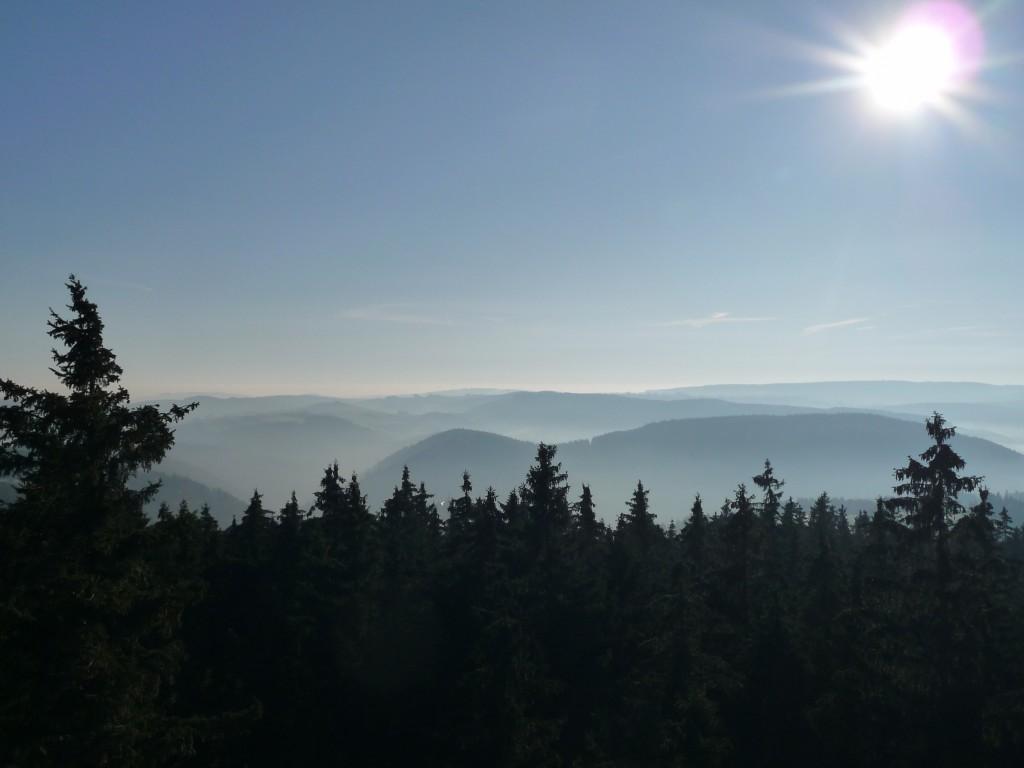 Ausblick von der Thüringer Warte