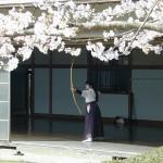 Kyudo, der Weg des Bogens