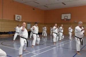 2015_06 Karatelehrgang Dörfles-Esbach 028