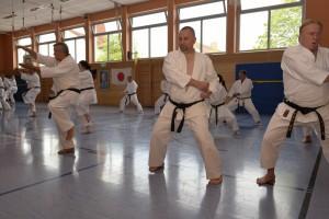 2015_06 Karatelehrgang Dörfles-Esbach 031