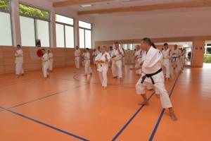 2015_06 Karatelehrgang Dörfles-Esbach 037