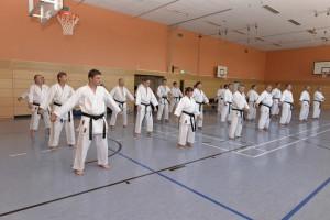 2015_06 Karatelehrgang Dörfles-Esbach 058