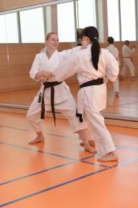 2015_06 Karatelehrgang Dörfles-Esbach 088